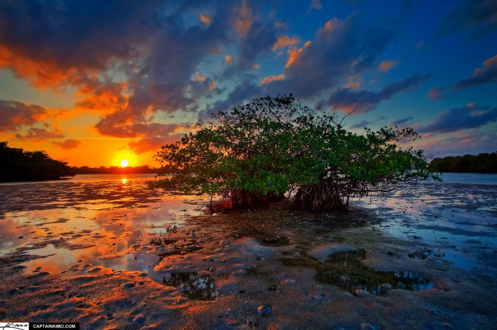 Little Mangrove Island at Sunset Over Lake Worth Lagoon